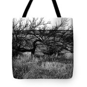 Every Which Way But Loose Tote Bag
