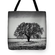 Everybody Has One Tote Bag