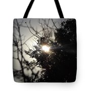 Everything Was A Blur Tote Bag