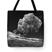 Evidence Of Weather Tote Bag