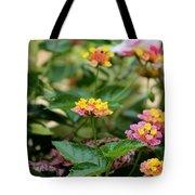 Evita Rose Lantana Tote Bag