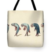 Evolution Of Fish Into Old Man, C. 1870 Tote Bag