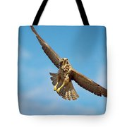 Exit Screen Right Tote Bag