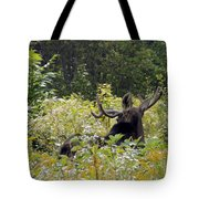 Exit Stage Right Tote Bag