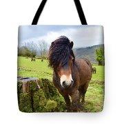 Exmoor Tote Bag