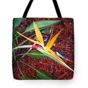 Exotic Bird Of Paradise Tote Bag