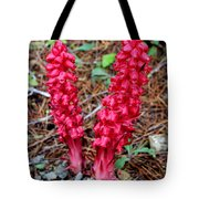 Exotic Flower Or  Tote Bag