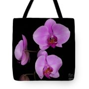 Exotic Orchids Tote Bag