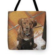 Expectant Annabelle Tote Bag