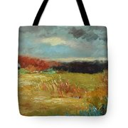 Expecting A Storm  Tote Bag