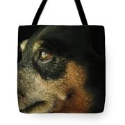 Experienced Guard Tote Bag