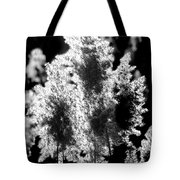 Exploded Cat Tails Tote Bag