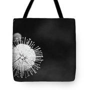 Exploding Blossom Tote Bag
