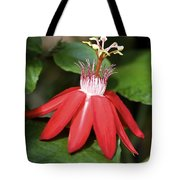 Exploding Red Flower Tote Bag