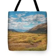 Exploring Guanella Pass Tote Bag