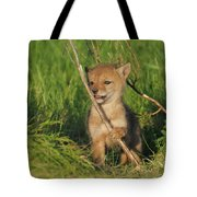 Exploring The Outside World Tote Bag