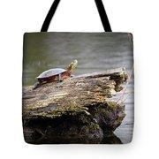 Exploring Turtle Tote Bag