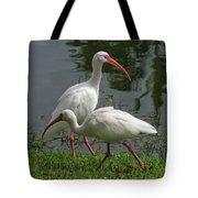 Exploring White Ibis Tote Bag