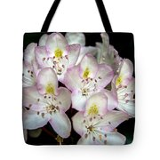 Explosion Of Light From Dark Tote Bag