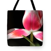 Exposed Tote Bag