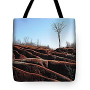 Exposed And Eroded Badlands Tote Bag
