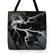 Exposed Tote Bag by Elaine Teague