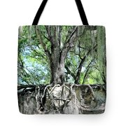 Exposed - Oak Roots Tote Bag