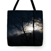 Exposing For The Light 2 Tote Bag