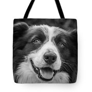Expression Of A Border Collie Tote Bag