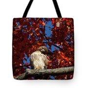 Expressive Hawk Tote Bag