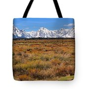 Extended Willow Flats Panorama Tote Bag