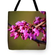 Extending Welcome Tote Bag