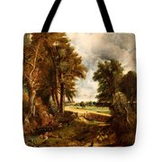 Extensive Landscape With Boy Drinking Water Tote Bag