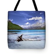 Exterior Decorations Tote Bag