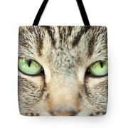Extreme Close Up Tabby Cat Tote Bag