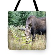 Eye-contact With The Moose Tote Bag