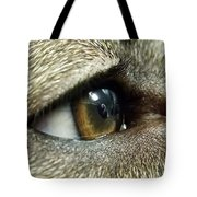 Eye Of The Canine Tote Bag