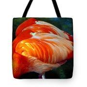 Eye Of The Flamingos Tote Bag