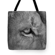 Eye Of The Lion #2  Black And White  Tote Bag