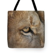 Eye Of The Lion #2 Tote Bag