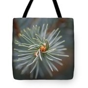 Eye Of The Pine Tote Bag