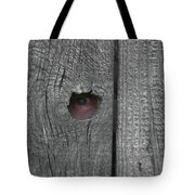 Eye On Life Tote Bag by Douglas Barnett