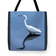 Eye On The Sky Tote Bag