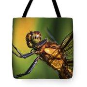Eye To Eye Dragonfly Tote Bag