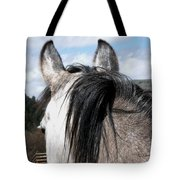 Eyeing The Distance Tote Bag