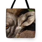 Eyes Are The Place To Start... Tote Bag