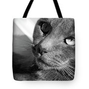 Eyes Of Russian Blue Tote Bag