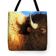 Eyes Of The Bison Spring 2018 Tote Bag