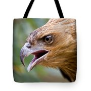 Eyes Of The Hunter Tote Bag