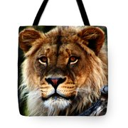 Eyes Of The Young King Tote Bag